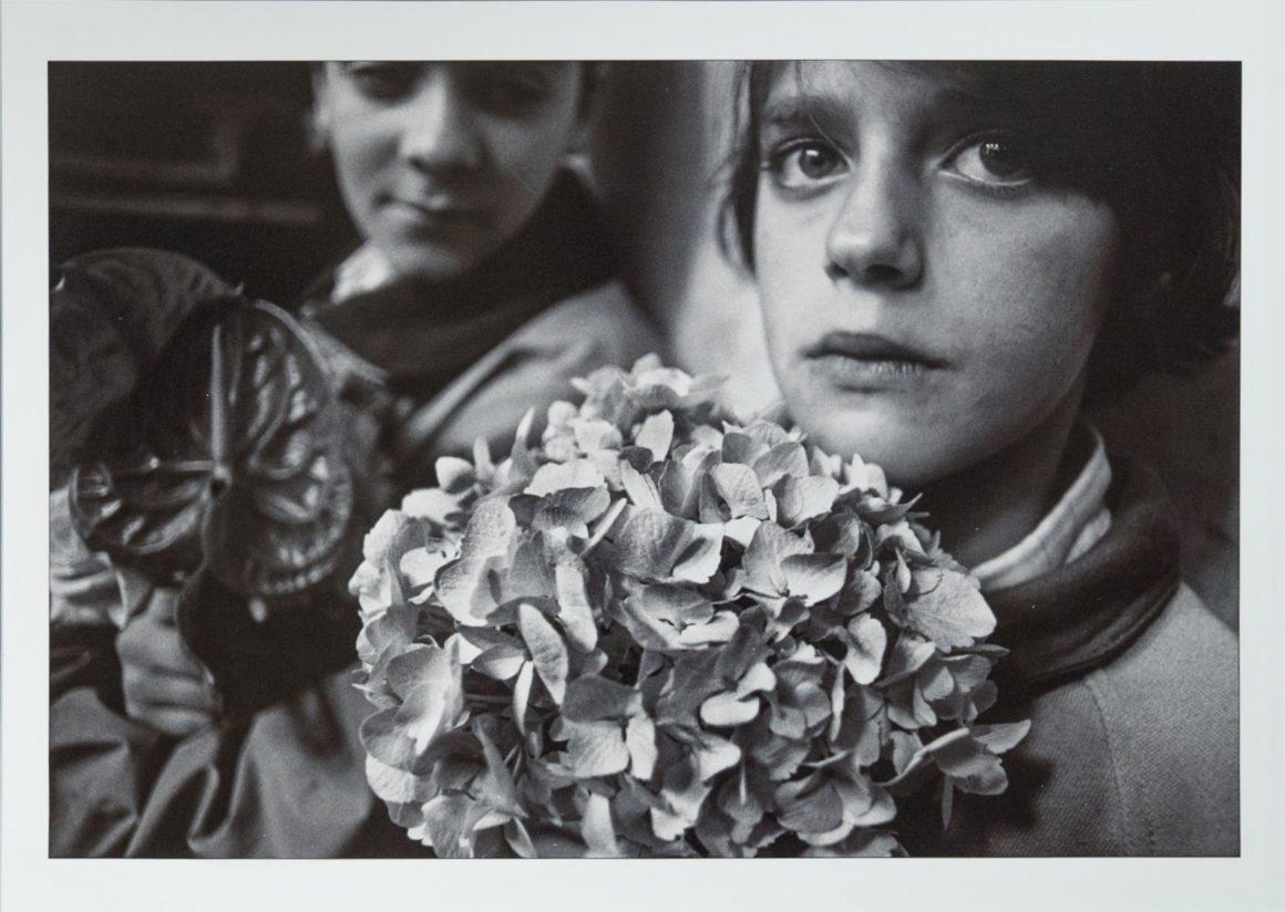Letizia Battaglia, Domenica delle Palme, Le Ortensie, Trapani, 1992